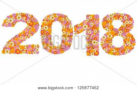 New year 2018 made from straw flowers isolated on white background
