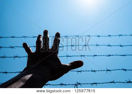 Silhouette hand extending to blue sky with barbwire and sunlight