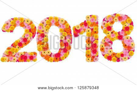 New year 2018 made from gerbera flowers isolated on white background