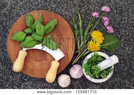 Fresh herb selection with mortar and pestle,  wooden board and chopper with chives, basil, dandelion, rosemary and garlic herbs on marble background.