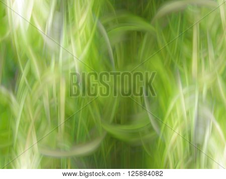 The abstract background in green spring tones