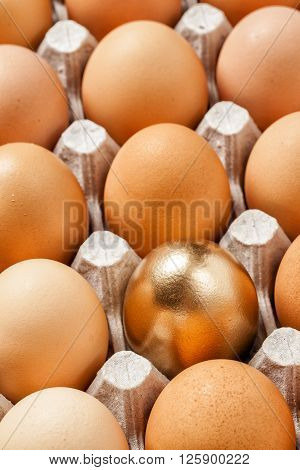 Golden Egg In A Row Of The Brown Eggs