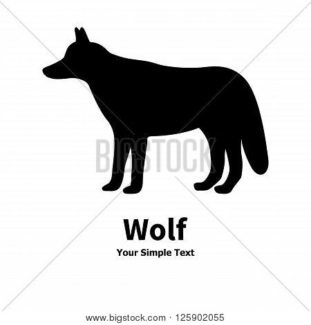 Vector illustration of a wild predator animal. Isolated wolf silhouette on a white background.