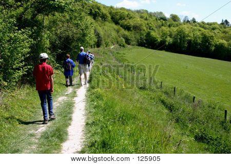 Farmland Walk