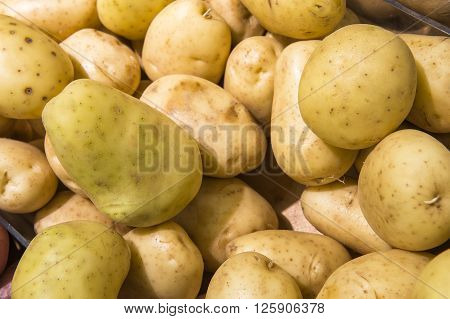 New Potatos From Market Shelves Real With Flaws And Bruises