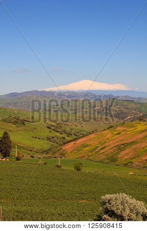 View of Etna volcano and Sicily field ** Note: Visible grain at 100%, best at smaller sizes