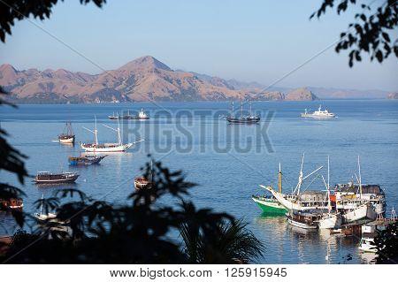 Labuan Bajo Harbor