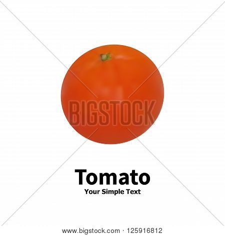Vector illustration of realistic vegetable tomato on white background with the inscription.