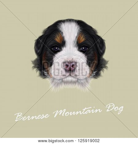 Cute fluffy face of tricolor domestic dog on beige background.