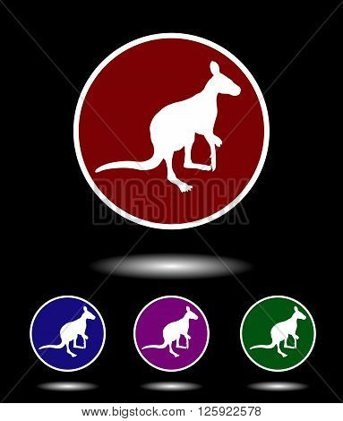 Vector Icon Logo Set 3 In 1 With Modern Vintage White  Kangaroo On Red, Blue, Violet And Green Backg
