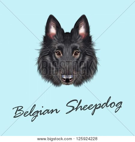 Cute face of black domestic dog on blue background.