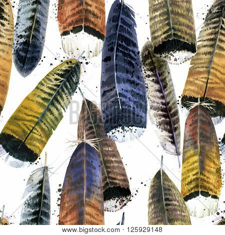 Feathers. Watercolor Feathers seamless pattern. hand drawn watercolor feather