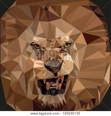 Roaring Lion in the style of low-poly on a black background. Vector illustration