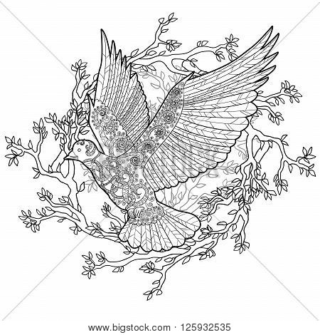 Flying dove with high details. Adult antistress coloring page. Black white hand drawn doodle bird. Sketch for tattoo, poster, print, t-shirt in zentangle style. Layered vector illustration.