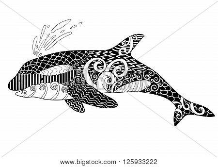 Killer whale with high details. Adult antistress coloring page with orca. Black white hand drawn doodle oceanic animal for art therapy. Sketch for tattoo, poster, print, t-shirt in zentangle style.
