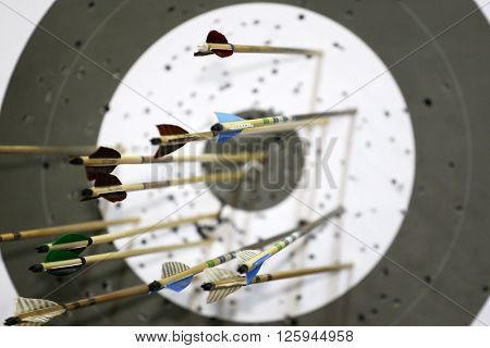 Arrows For The Sports Of Archery In Target