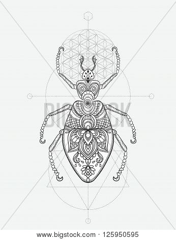 Greeting card with bug. Ornamemtal of Insect made in vector. Perfect cards, or for any other kind of design, coloring book pages. Seamless hand drawn map with  bug ornamental.