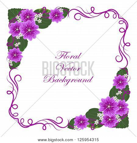 Floral vector background with vintage frame and mallow flowers for use in your design. Vector illustration.