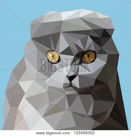 Cat Scottish Fold in the style of triangulation on the sky background