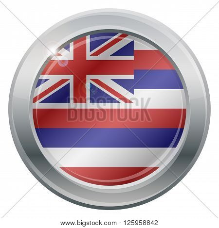 Hawaii Flag Silver Icon