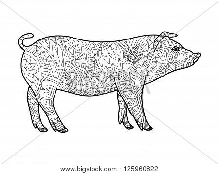 Piggy animal coloring book for adults vector illustration. Anti-stress coloring for adult. Piggy farm animal zentangle style. Black and white lines. Lace pattern