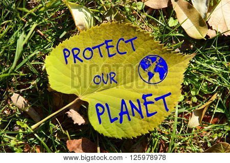 Protect Our Planet text on autumn leaf on grass background