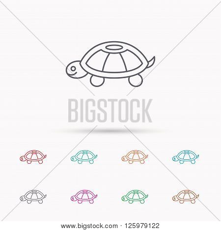 Turtle icon. Tortoise sign. Tortoiseshell symbol. Linear icons on white background.