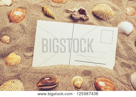 Blank postcard in hot beach sand with some sea shells