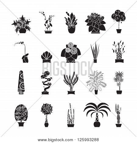 Illustration of houseplants, indoor and office plants in pot. Home plants for garden or home. Set of potted plants. Flat plants, vector plants icon set. Home plant for greenhouse.
