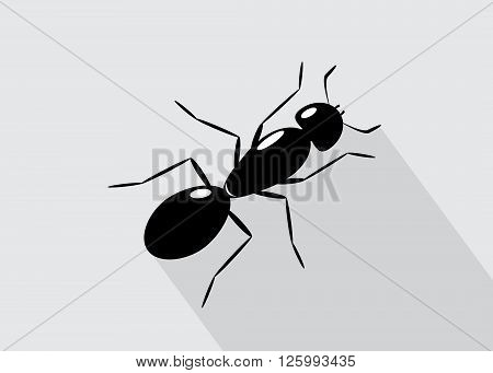 icon ant . An ant of black color on a gray background