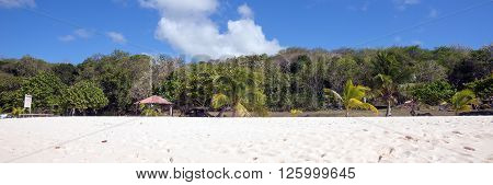 deserted white sand caribbean beach in Guadeloupe