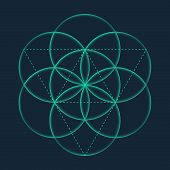 Flower Of Life Sign. Vector Isolated Geometric Symbol Flower Of Life. Flower Of Life Symbol With Cir poster