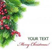 Постер, плакат: Рождественская елка украшения
