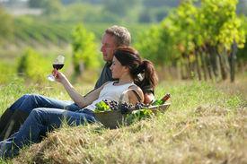 foto of wine-glass  - Couple drinking wine in vineyard - JPG