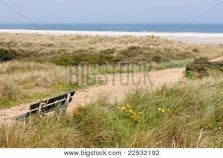 Dutch Coast With Dunes And the Beach