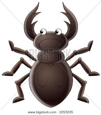 Horny Beetle