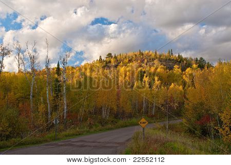 Autumn Backroad, Glowing Hillside