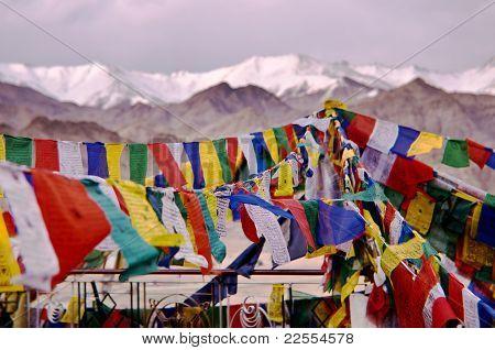 tibetan prayer flags, India, Leh