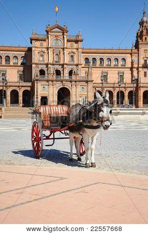 Seville - Horse Drawn Carriage Tour Donkey At Plaza De Espana