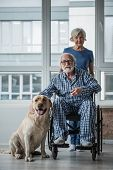 Waist Up Portrait Of Calm Senior Married Couple Looking At Camera. Disabled Male Sitting In Invalid  poster