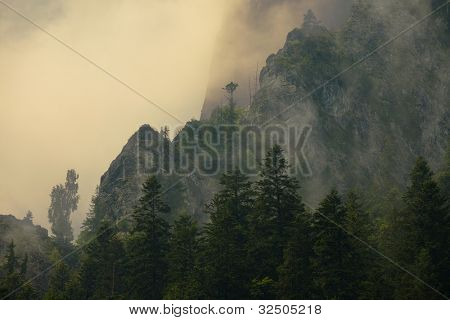 Mist in the mountains of Transilvania