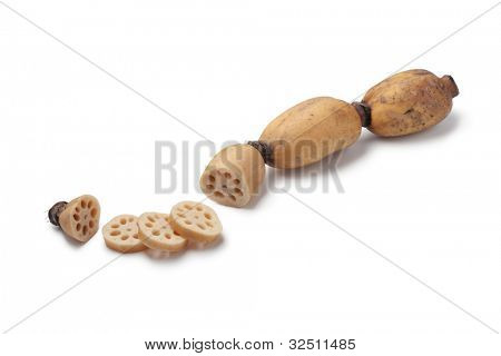 Lotus root and slices on white background