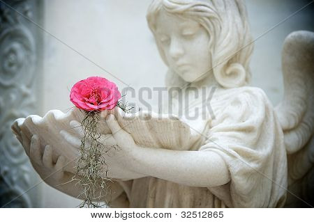 Young Angle With Flower