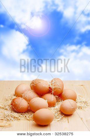 Natural Eggs.jpg