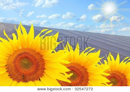 Solar power station and sunflowers. Pure energy concept.