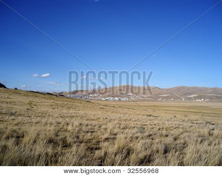 Grass Field In Remote Area Of Utah By The Great Salt Lake