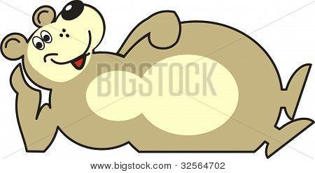 Casual Bear