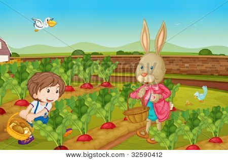 Rabbit and boy picking vegies