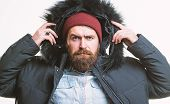 Prepared For Weather Changes. Winter Stylish Menswear. Man Bearded Stand Warm Jacket Parka Isolated  poster