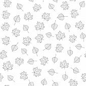 Autumn Leaves. Vector Monochrome Seamless Pattern With Hand Drawn Outline Leaves. Sketch Maple And B poster